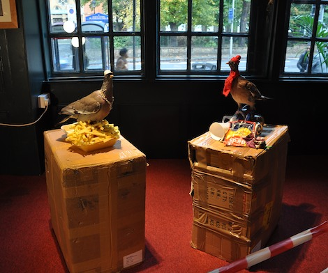 Filthy Luker pigeon installation