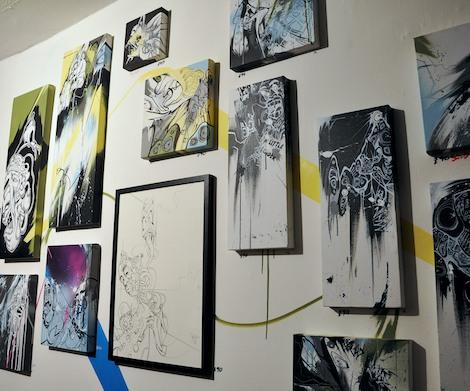 Nikill's canvases